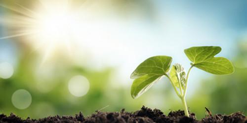 Nuova legge sull'agricoltura biologica, strumenti innovativi e nuove risorse per un settore in grande crescita